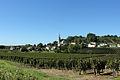 Vue du bourg de Saint-Michel de Fronsac depuis les vignes2.jpg
