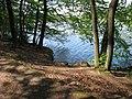 Vyžlovský rybník (025).jpg