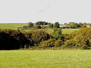 Wadham, Knowstone