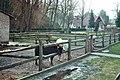 Walbeck (Hettstedt), der Tierpark.jpg