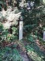 Waldfriedhof dahlem Manfred Bluth.jpg