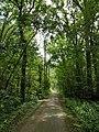 Wandelpad in Provinciaal Domein Vrieselhof 2.jpg