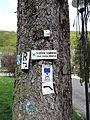 Wanderwegmarkierungen Schlangenbad.JPG
