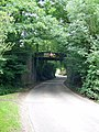 Wangfield Lane Railway Bridge - geograph.org.uk - 31738.jpg