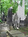 Warszawa, Cmentarz Powązkowski SDC11697.JPG