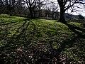 Weald and Downland Museum Singleton - geograph.org.uk - 1208314.jpg