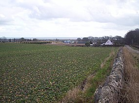 West Balmirmer Farm and Balmirmer Cottages - geograph.org.uk - 127319.jpg