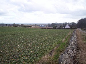 Balmirmer - Image: West Balmirmer Farm and Balmirmer Cottages geograph.org.uk 127319