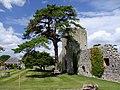 Westenhanger Castle - geograph.org.uk - 889580.jpg