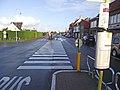 Westkapelle bus zebra crossing.jpg