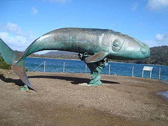 Southern right whale - Sculpture of southern right whale at Cockle Creek on Recherche Bay, Tasmania, where bay whaling was performed extensively during the 1840s and 1850s