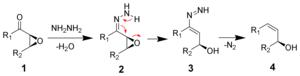 Wharton reaction - The mechanism of the Wharton reaction