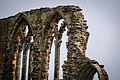 Whitby Abbey (13430483644).jpg
