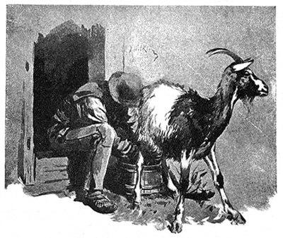 byk kobieta umawiająca się z mężczyzną