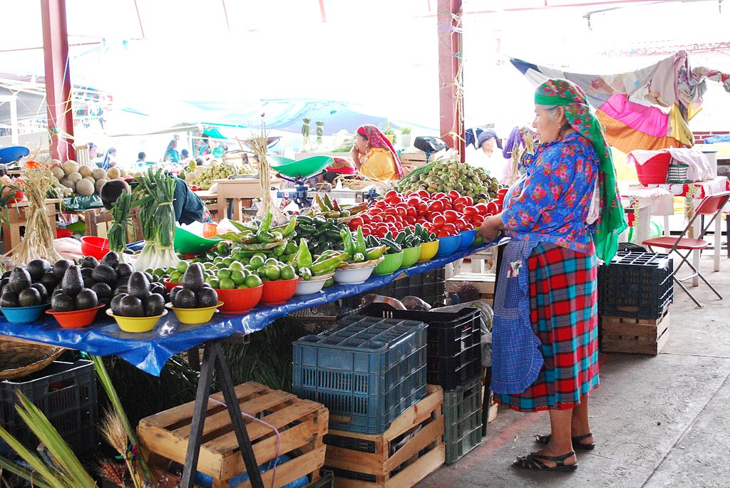Indigenous woman selling at the municipal market