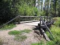 Wooden bridge in forest.jpg