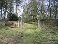 Woodland gateway at Gwysaney - geograph.org.uk - 736061.jpg