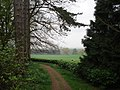 Woodland track at Berrington Hall - geograph.org.uk - 454607.jpg