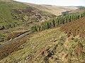 Wool Law hillside towards Water Head - geograph.org.uk - 688473.jpg