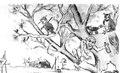 Worovsky drawing fragment.tif