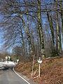 Wuppertal Lüntenbecker Weg 0002.jpg