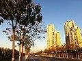 Xiqing, Tianjin, China - panoramio (59).jpg
