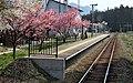 Yōson-Kōen Station 004.JPG