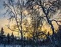 Y1A9829 Lapland (15186874103).jpg