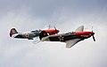 Yaks in formation. (14197613041).jpg