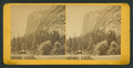 Yosemite Valley, California, from Robert N. Dennis collection of stereoscopic views 12.png