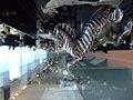 Zebra car ornament.jpg