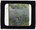 """Barberrys,"" Nelson Doubleday house, Mill Neck, New York. Birdbath LCCN2008675715.jpg"
