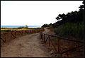 """""""Riserva naturale Torre Salsa"""" andando verso il mare.jpg"""