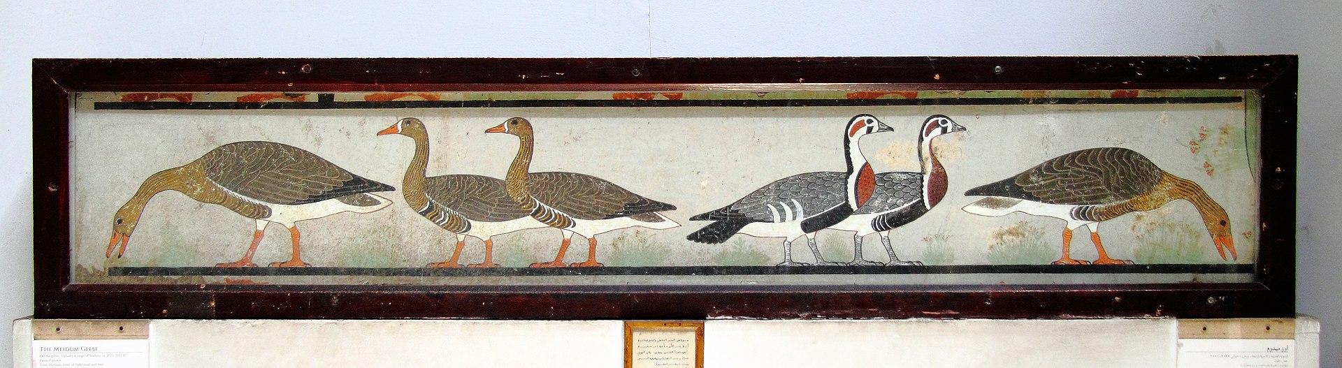 1920px-%C3%84gyptisches_Museum_Kairo_201