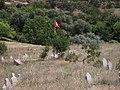 Şehit Mezarı (Adem ERDAŞ) - panoramio.jpg
