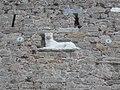 Μαρμάρινος λέων - Κάστρο Σκύρου.jpg