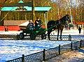 Апрель в Кузьминском парке, м.Кузьминки. Moscow, Russia - panoramio - Oleg Yu.Novikov (12).jpg