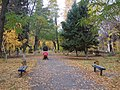Волжский - город золотой осени - panoramio.jpg