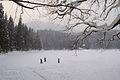 Замерзле озеро Синевир.jpg