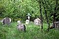 Зарубинці, козацьке кладовище.JPG