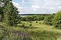 З околиці села Придніпровського.jpg