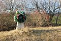 Козацький редут - panoramio.jpg
