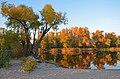 Озеро Вербне, осінь, захід сонця 03.jpg
