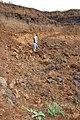 Покорение Эвереста. Старое Иванаево. Чистопольский р-н. РТ. Август 2013 - panoramio.jpg
