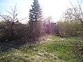 Ранней весной на даче.jpg