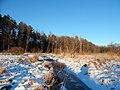 Речка Свень - panoramio.jpg