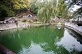 Сквер «Лебедине озеро» - panoramio (9).jpg