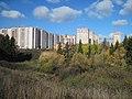 Улица Петрова в Ижевске.jpg