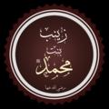 زينب بنت محمد تخطيط.png
