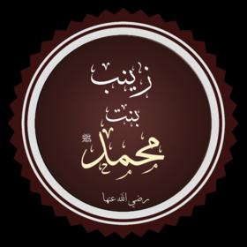 زينب بنت محمد ويكيبيديا